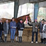 Res Champion High Point Horse